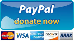 Paypal and credit card donate now button